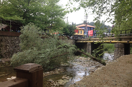 misi köprübaşı aile çay bahçesi