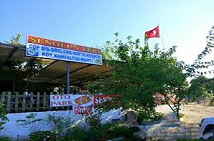 Şenol'un Yeri / Didim / AYDIN