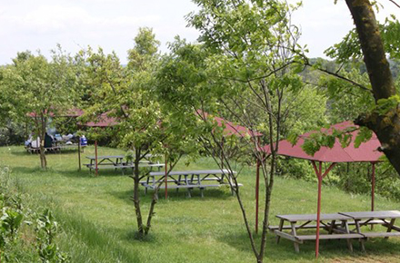 Polenez Gül Park / Beykoz / İSTANBUL