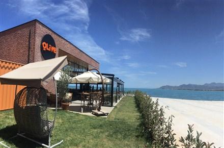 Olive Cafe & Restaurant / Altınordu / ORDU