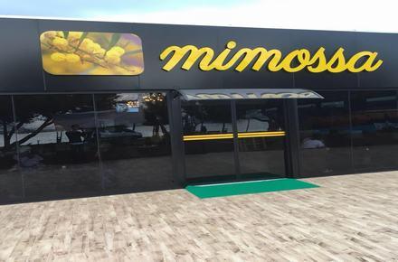 Mimossa Cafe / Küçükçekmece / İSTANBUL