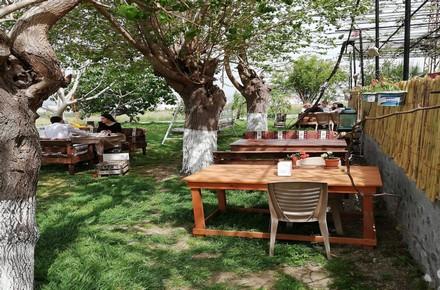 Çapa Kahvaltı Bahçesi / Arsuz / HATAY