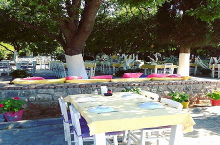 limonatta bitez café & restaurant / Bodrum / MUĞLA