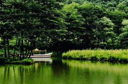 nehir bahçe