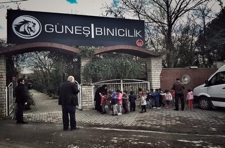 Güneş Binicilik / Çekmeköy / İSTANBUL