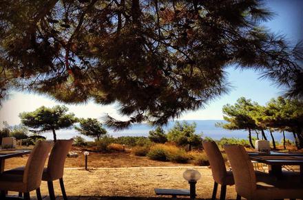 Teos Park Cafe Restoran / Seferihisar / İZMİR