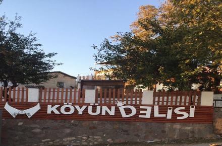 Köyün Delisi