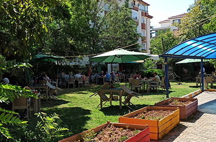 Bal Bahçe / Merkez / AKSARAY