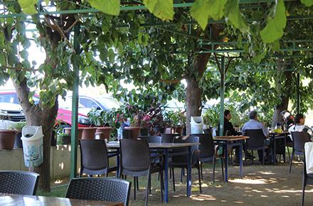 Dutlu Bahçe Kahvaltı / Tire / İZMİR
